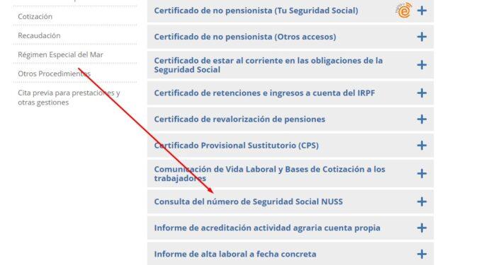 Paso 2 - Consulta del número de Seguridad Social